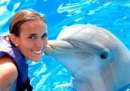 Lumba-Luma Berkawan dengan Manusia